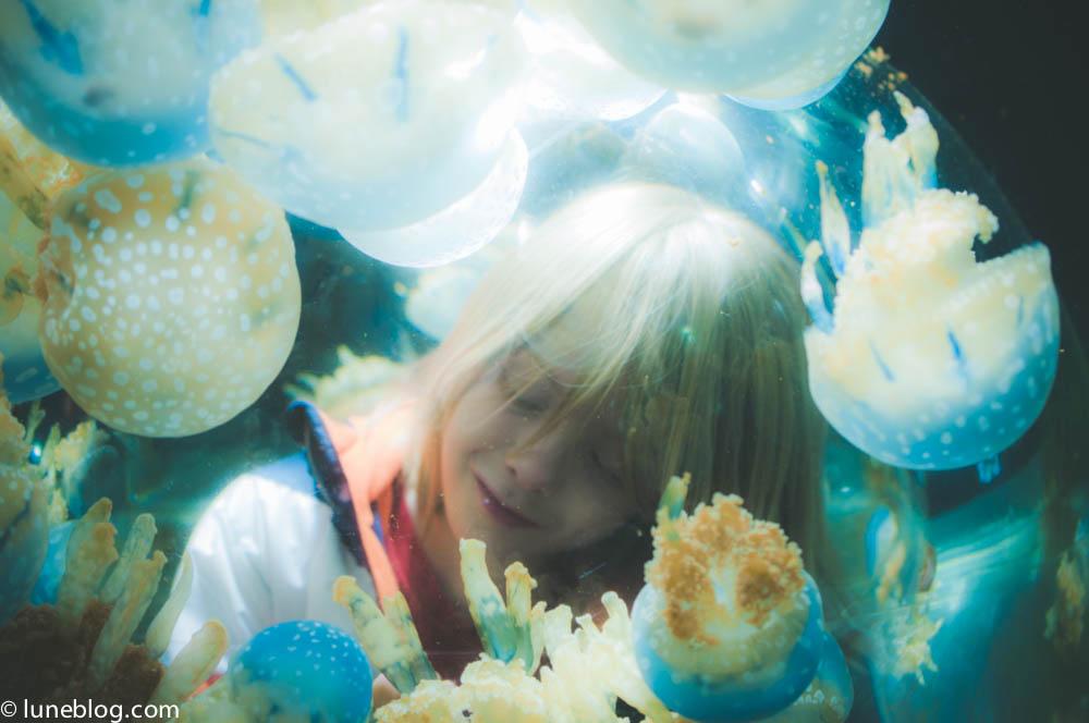 vancouver aquarium lune blog (31 of 50).jpg