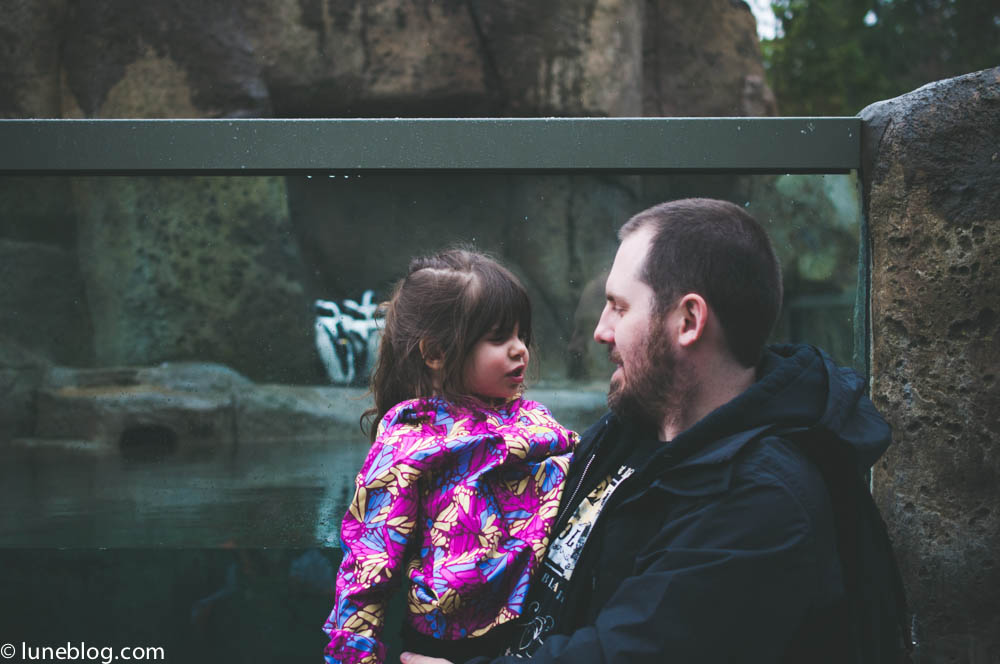 vancouver aquarium lune blog (49 of 50).jpg