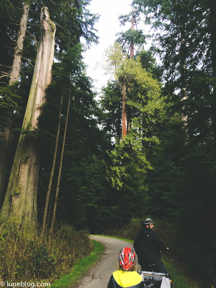 vancouver stanley park sea wall bike ride lune blog (26 of 26).jpg