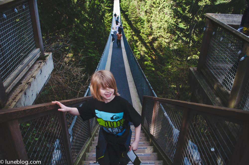 capilano suspension bridge vancouver lune blog (10 of 39).jpg