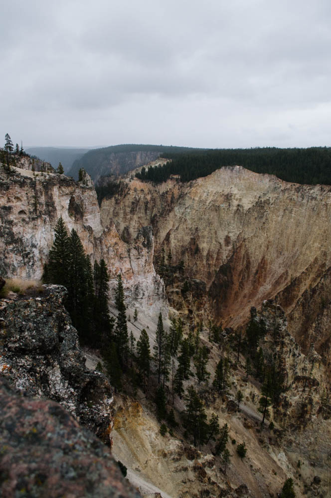 montana lune idyll guide blog yellowstone (32 of 121).jpg