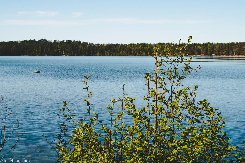 blue lake ontario camping lune travel blog (16 of 74).jpg