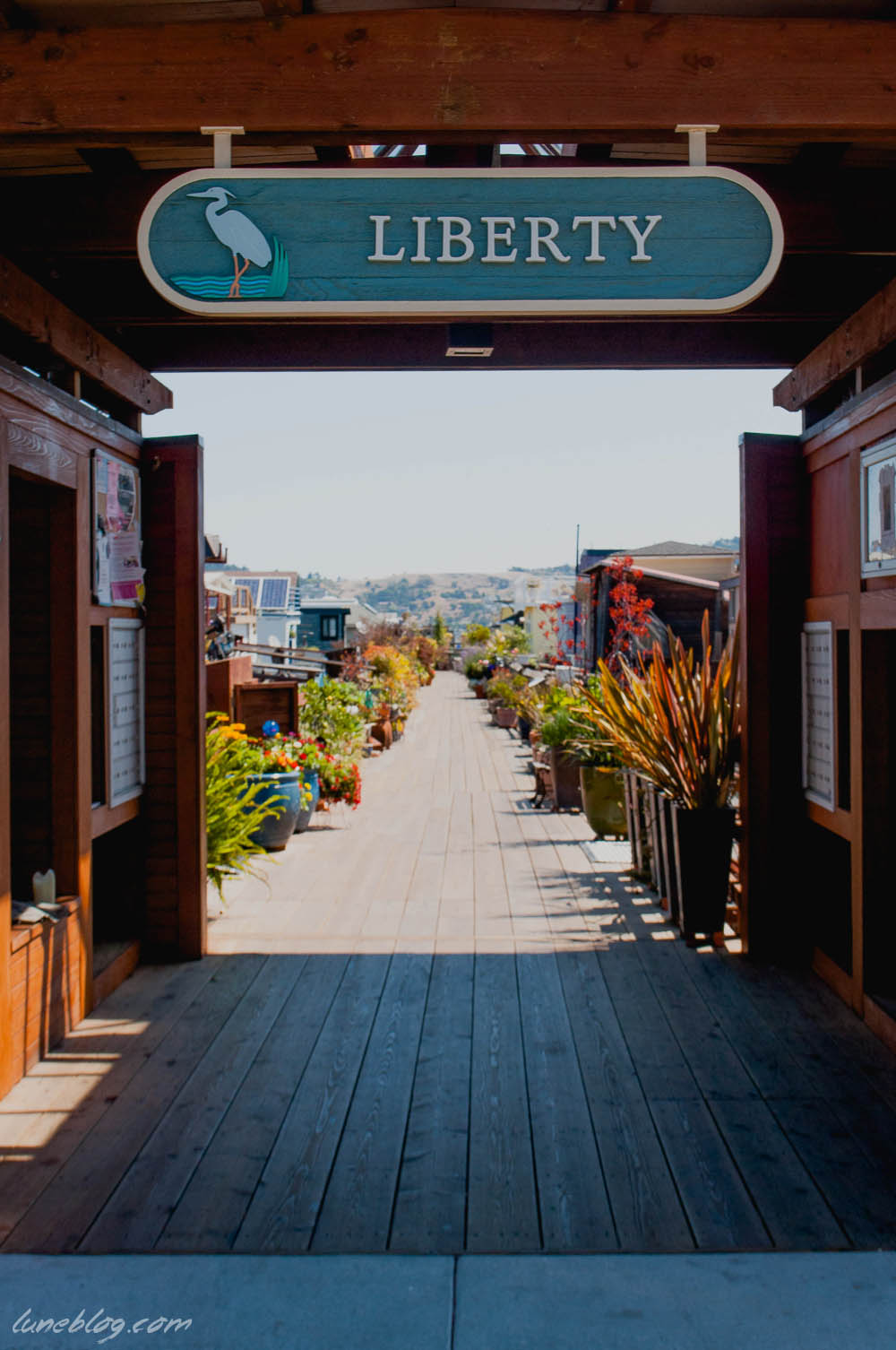 houseboats of sausalito sanfransisco lune travels blog (3 of 31).jpg