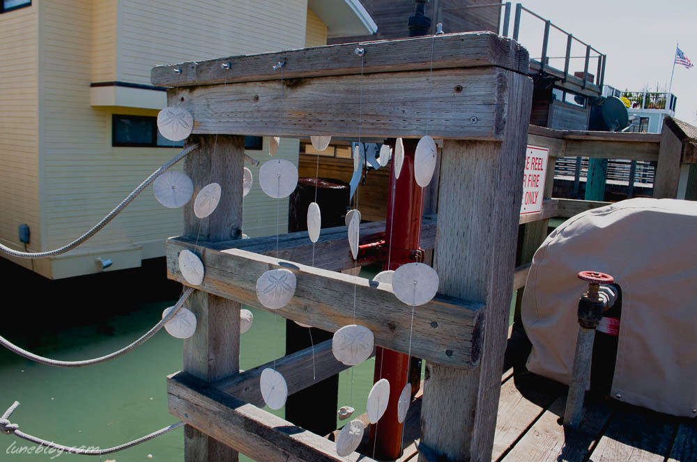 houseboats of sausalito sanfransisco lune travels blog (26 of 31).jpg
