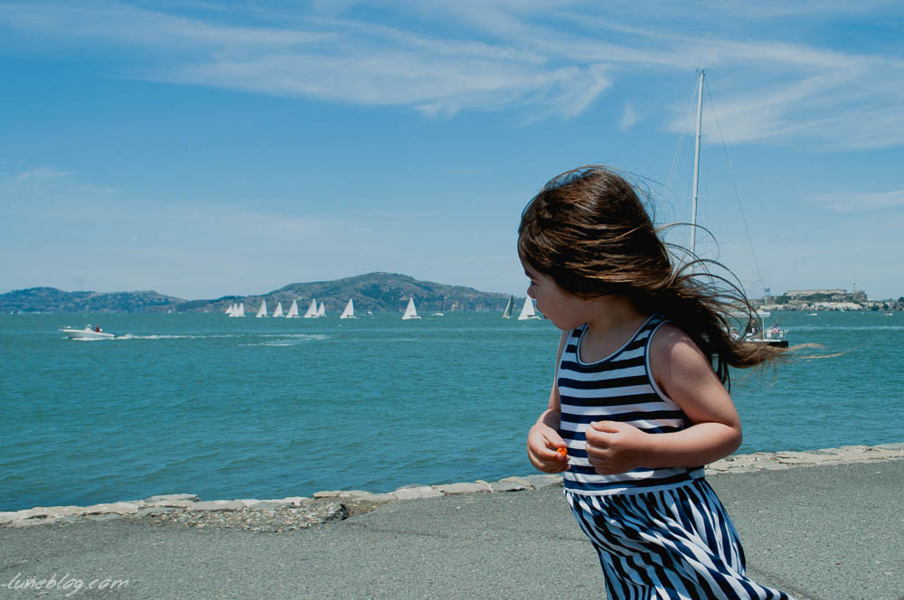 A windy view of the bay in San Fransisco after a challenging family bike ride.