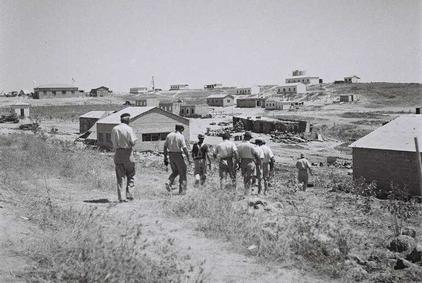 Click photo to download. Caption: A view of Kibbutz Ruhama in the northern Negev. Credit: State of Israel National Photo Collection.