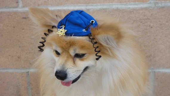 Click photo to download. Caption: Los Angeles-based Lena Pavia creates Hanukkah hats to get your beloved pooch (or pussycat!) in the holiday spirit. Credit: Lena Pavia.