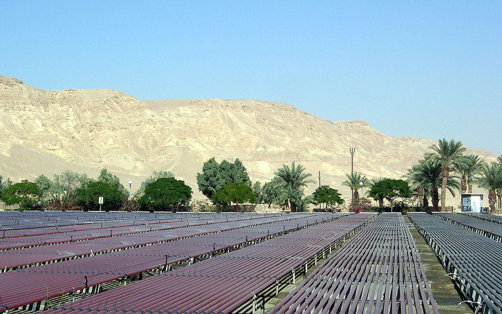 Kibbutz Ketura in the Negev Desert of southern Israel. Credit: Wikimedia Commons.