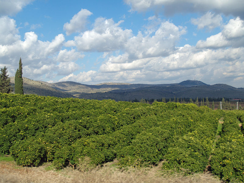 The Galilee. Credit: David Shankbone.