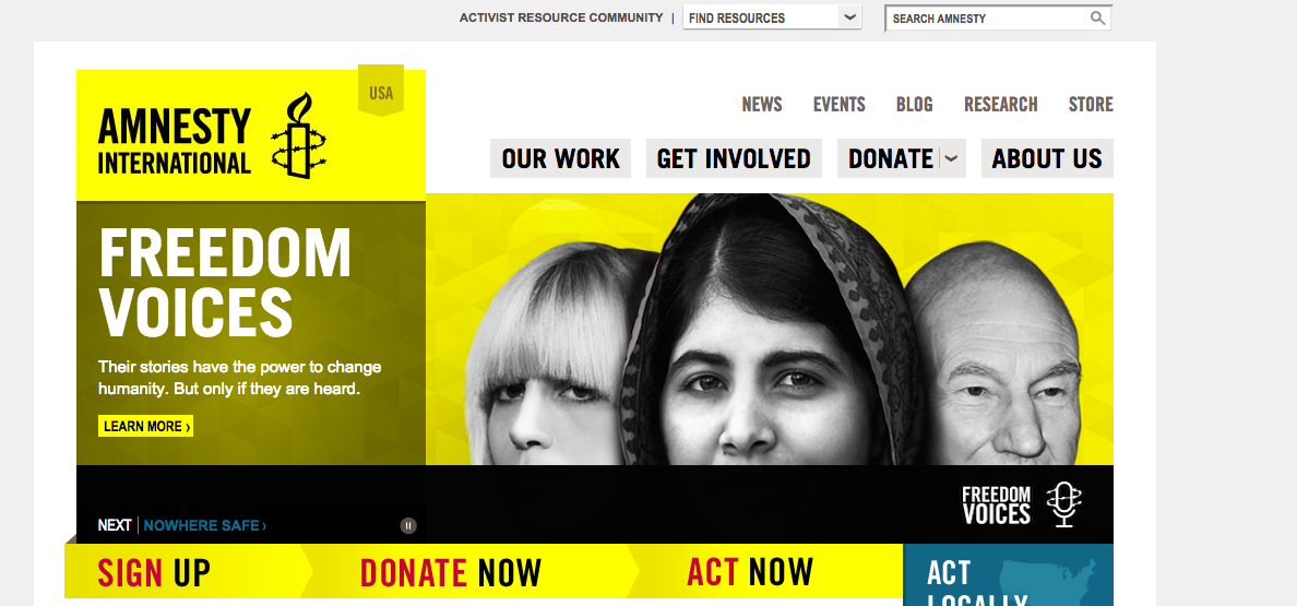 The Amnesty International homepage. Credit: Screenshot.