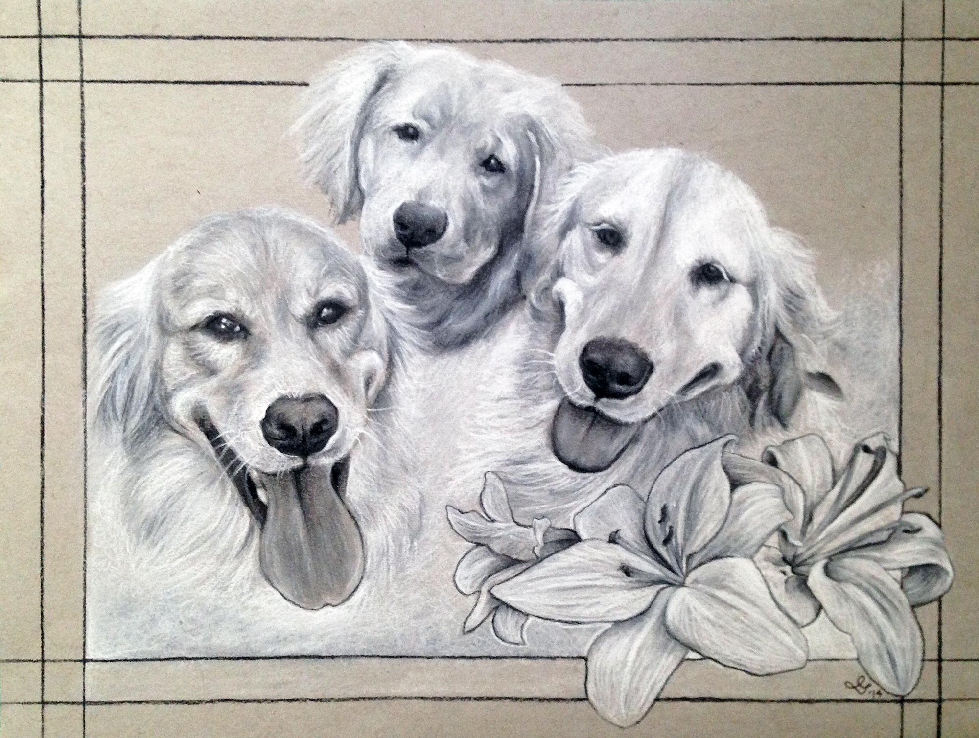 Louseal, Layla, Beau