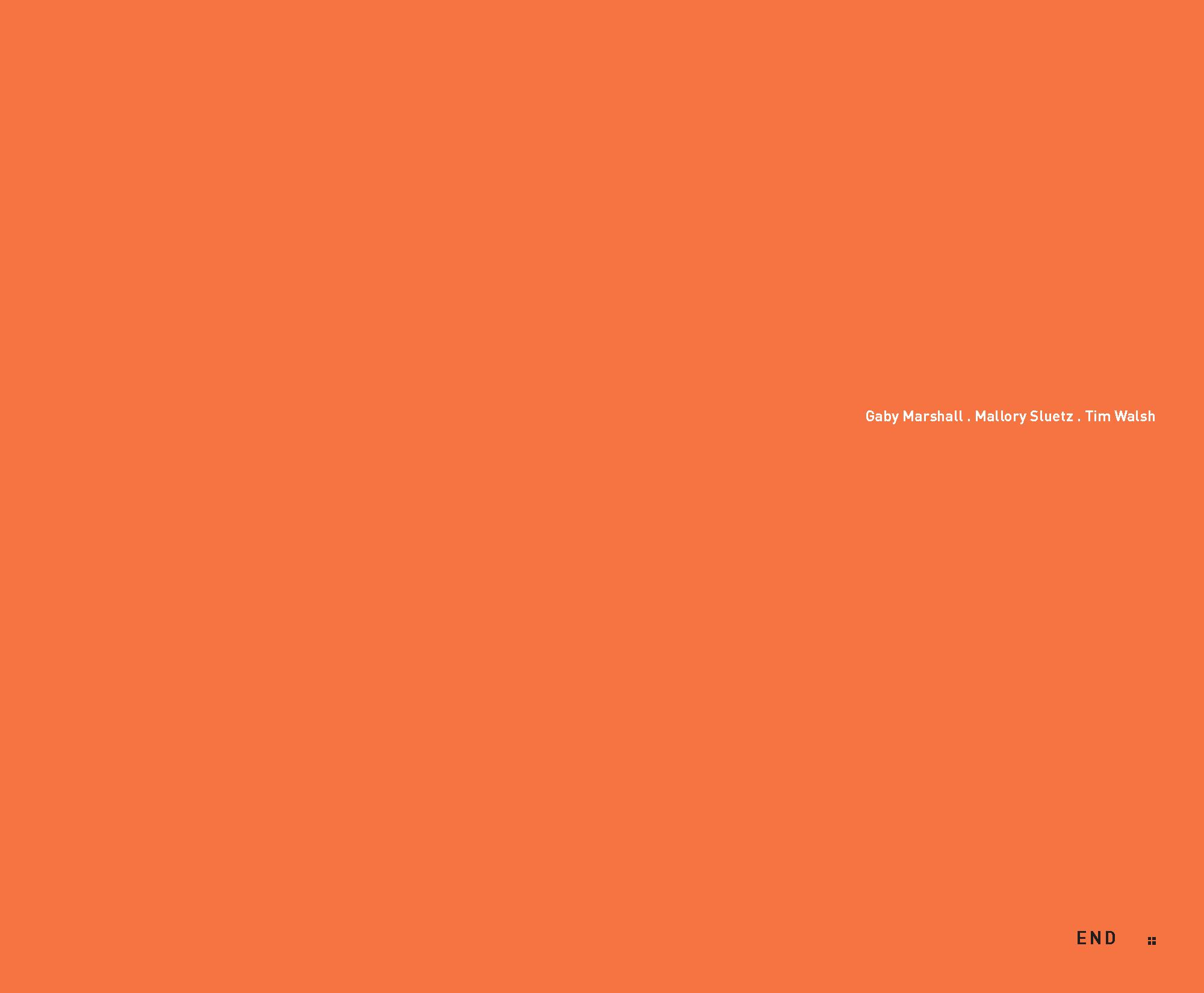 PEER-Process_Page_32.jpg