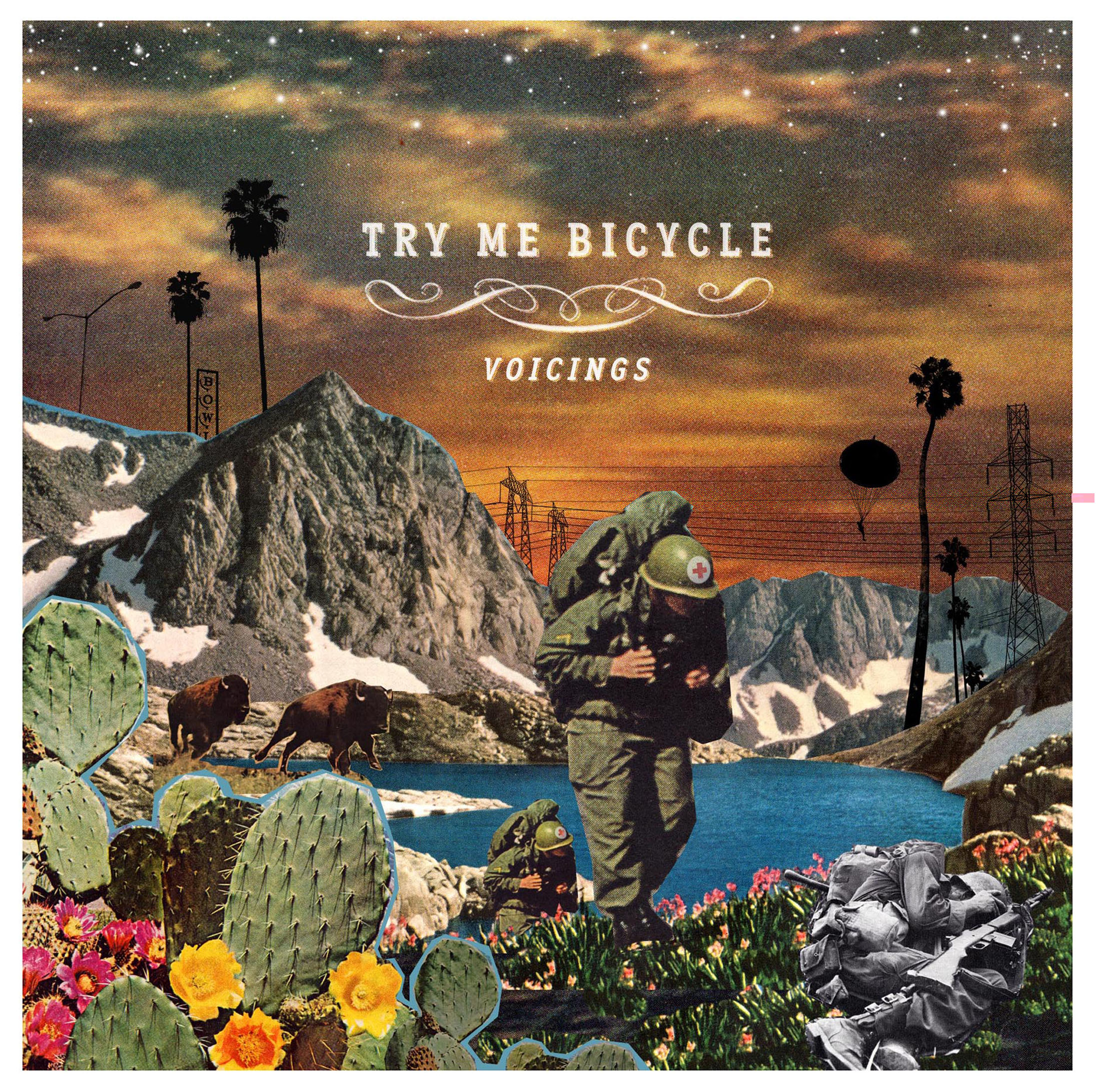 TRY ME BICYCLE COVER.jpg