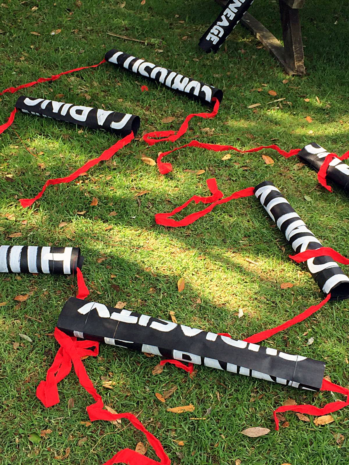 red ties on grass.jpg