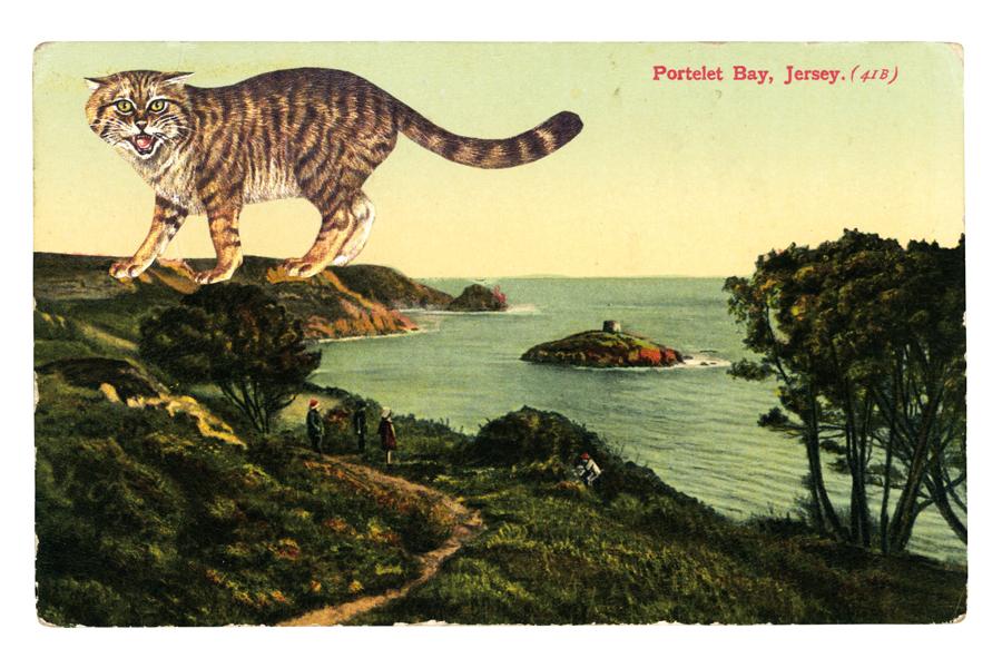 graciahaby_postcardprint03.jpg