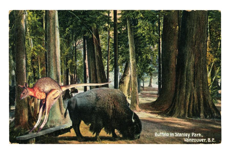 graciahaby_postcardprint07.jpg