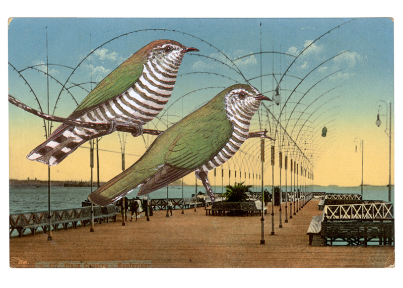 Gracia Haby,  In Montevideo they could be themselves , 2007, postcard collage