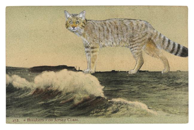 Gracia Haby,  A phantasm off the Jersey Coast , 2012, postcard collage