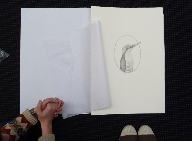 Louise Jennison,  A Year of Southern Hemisphere Birds , 2013, artists' book