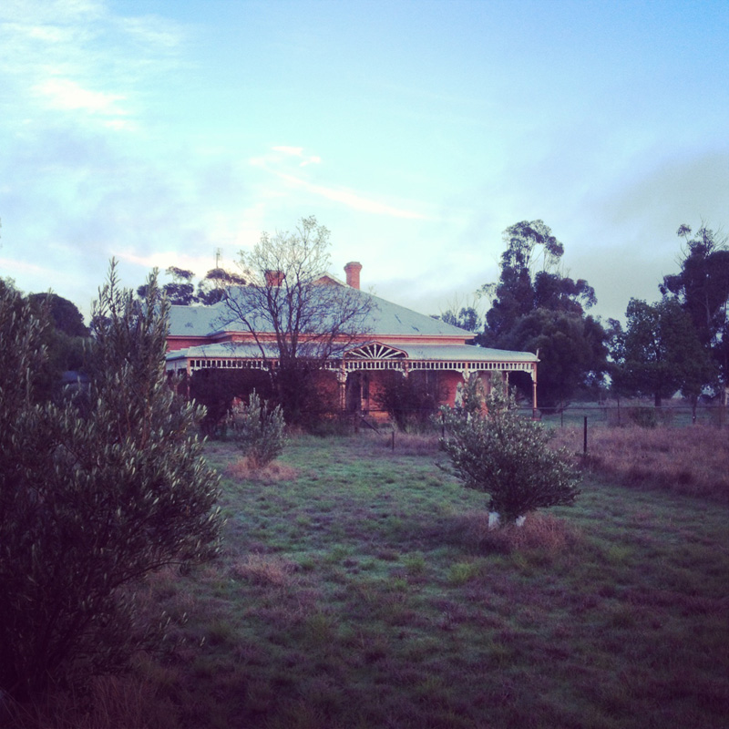 The view from beneath the peppercorn trees, Mathoura