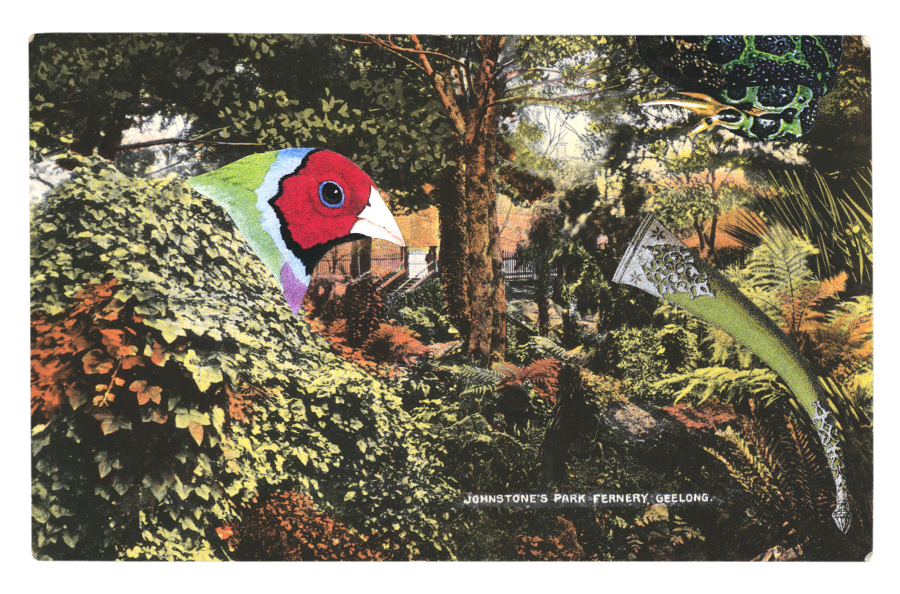 Gracia Haby,  Making spare wings from foliage , postcard collage, 2013