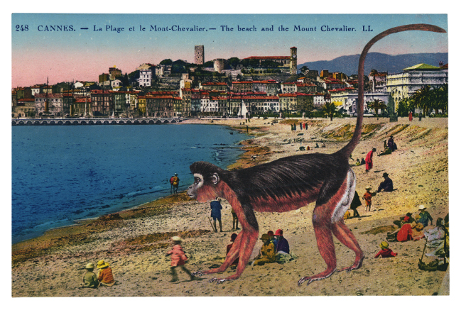 Gracia Haby,  To give chase , 2012, postcard collage
