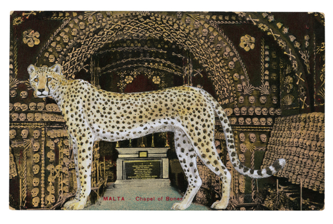 Gracia Haby,  A Helter-skelter existence led me to the Chapel of Bones , 2012, postcard collage