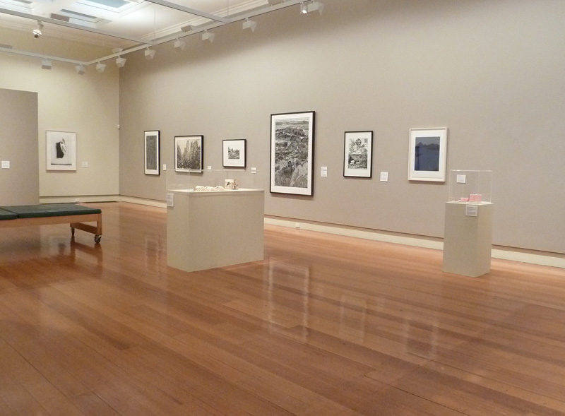 As inclination directs ,  exhibited as part of the  2013 Geelong Acquisitive Print Awards , Geelong Gallery
