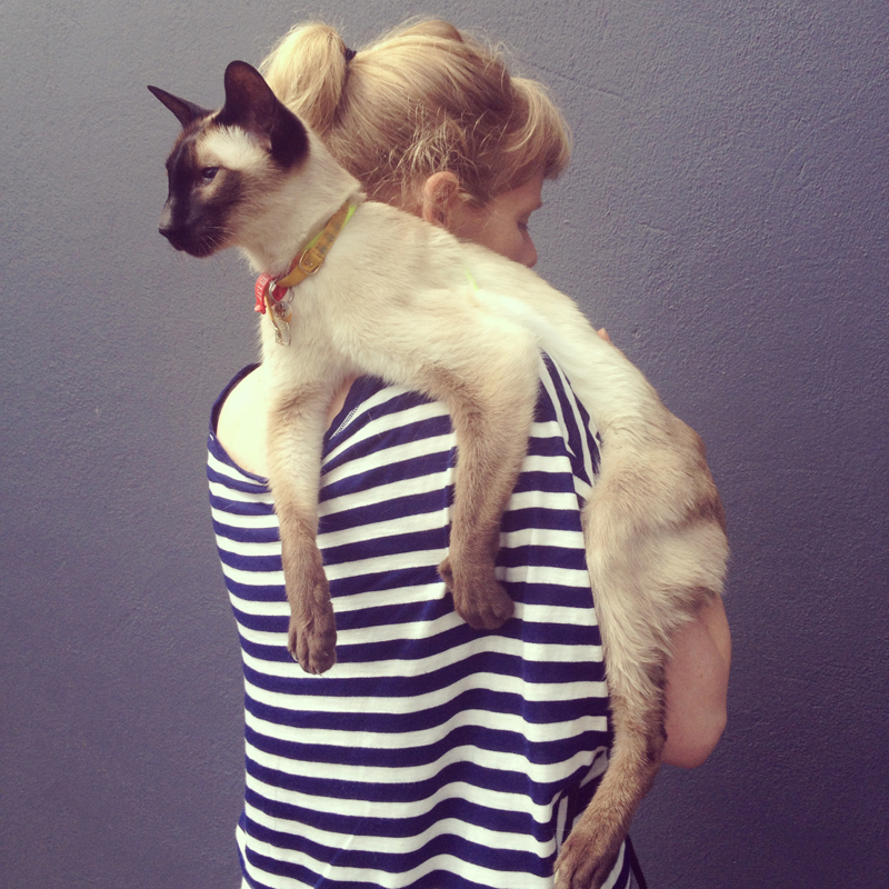 With a siamese cat uponher shoulder, we head to the local veterinary clinic