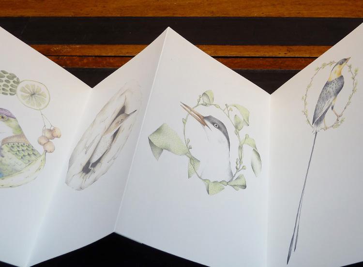 Louise Jennison,   A Flight of Twelve Southern Hemisphere Birds  , 2013, artists' book