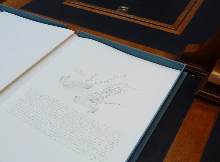 gracialouise_birds45.jpg