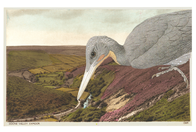 Gracia Haby,  Drawing lines in the earth of Exmoor,  2013, postcard collage