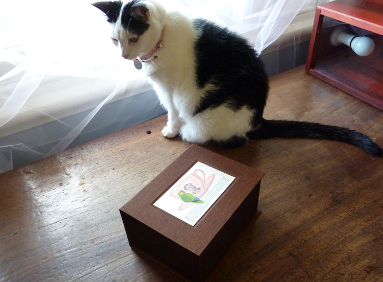 Making Solander boxes for the holding of such items as botanical specimens, maps, papers, and happiness