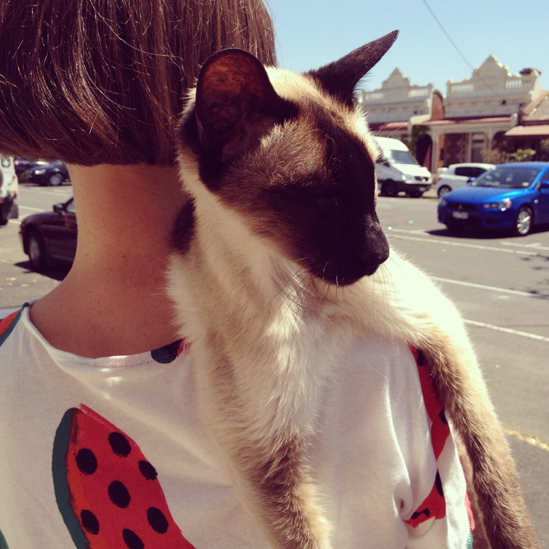 With a siamese cat upon her shoulder