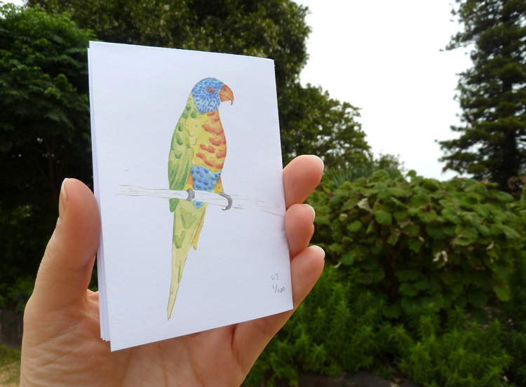 Louise Jennison,   Four Rainbow Lorikeets (Trichoglossus haematodus) who visited my garden one summer's day  , 2014, zine