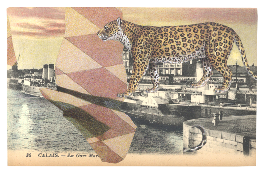 Gracia & Louise,  Concealment in Calais sought (I) , 2014, postcard collage with a Leopard ( Panthera pardus )