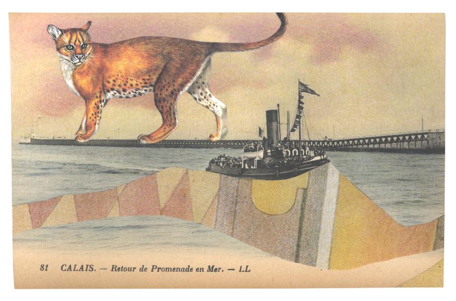 Gracia & Louise,  Concealment in Calais sought (III) , 2014, postcard collage with a Golden Cat ( Felis aurata )