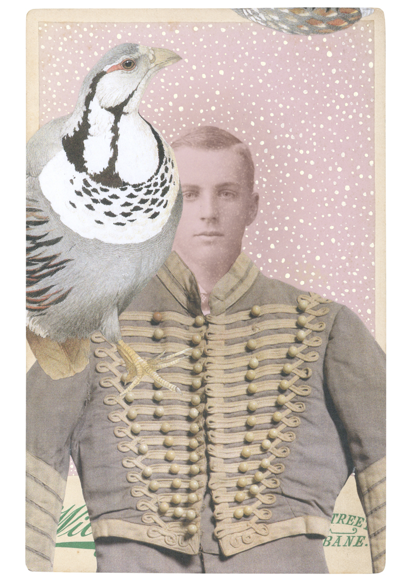 Gracia Haby,  In the borrowed costume for the Huzzar c. 1933, from Massine's Le Beau Danube, with a Himalayan snowcock , 2014, collage on cabinet card