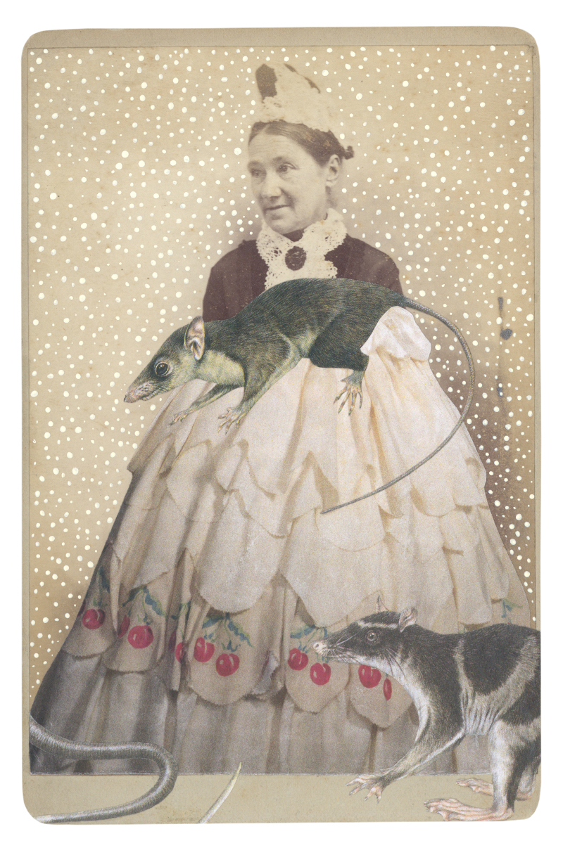 Gracia Haby,  In the borrowed skirt of Columbine, c. 1942, with a Pen-tailed tree shrew (Ptilocercus lowii) and a Water opossum (Chironectes minimus) , 2015, collage on cabinet card