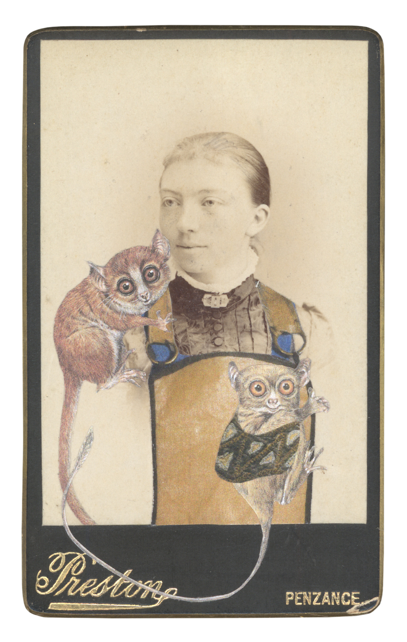 Gracia Haby,  In the borrowed costume for a female worker from Step of steel, designed by Georgy Yakulov, c 1927, with a Brown mouse lemur (Microcebus rufus) and a Horsfield's tarsier (Cephalopachus bancanus) , 2015, collage on carte de visite
