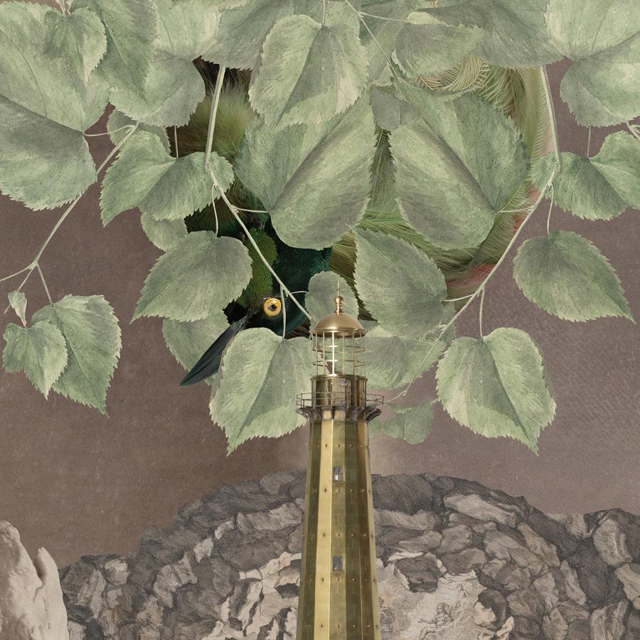 gracialouise SLV bird hide.jpg