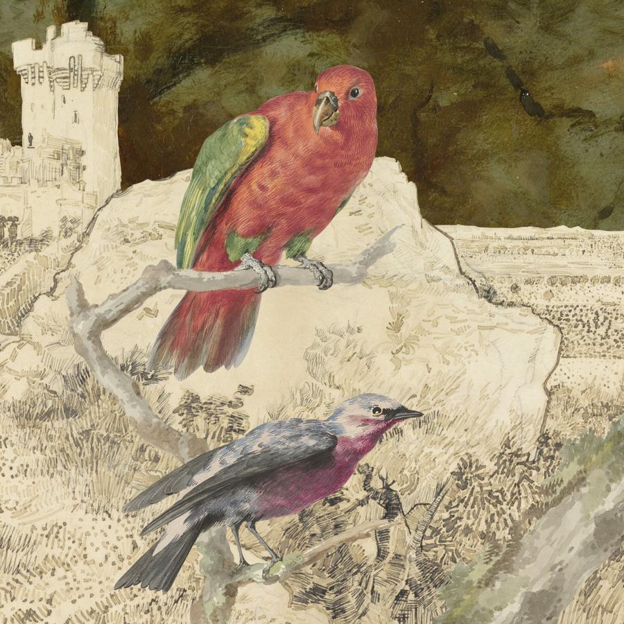 gracialouise SLV bird.jpg
