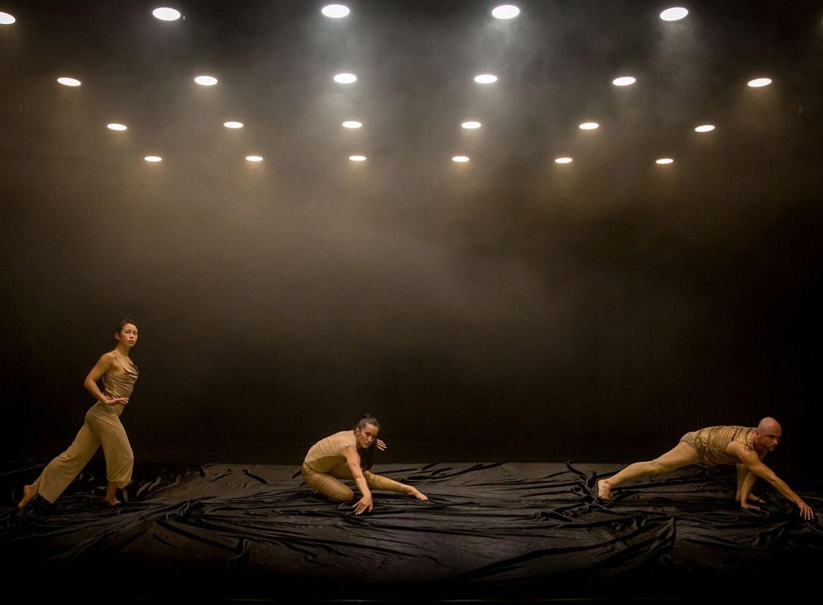Melanie Lane's  Nightdance  (image credit: Bryony Jackson)