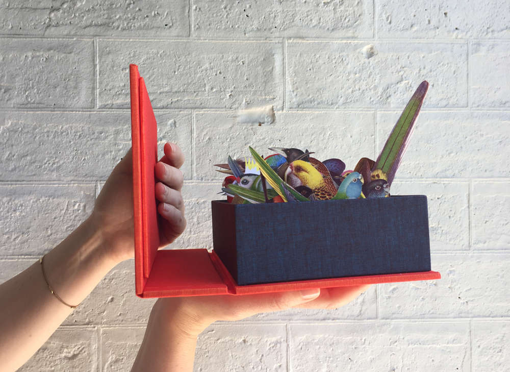 Gracia Haby & Louise Jennison,   An index box of Australian birds still fluttering  , 2016, collage housed in a cloth Solander box, with inlaid drawing
