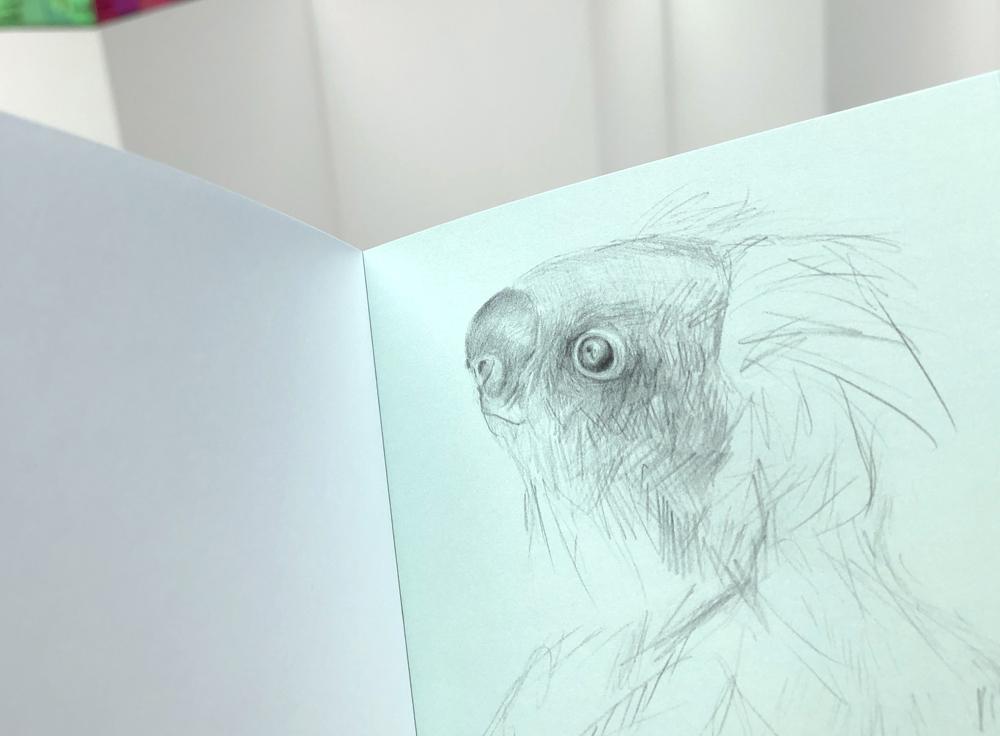 gracialouise_Museum Sketches 12.jpg