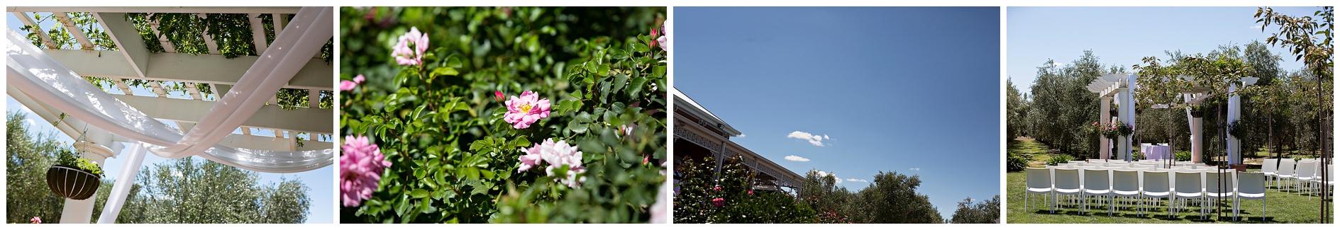 shepparton-photographer_0037.jpg