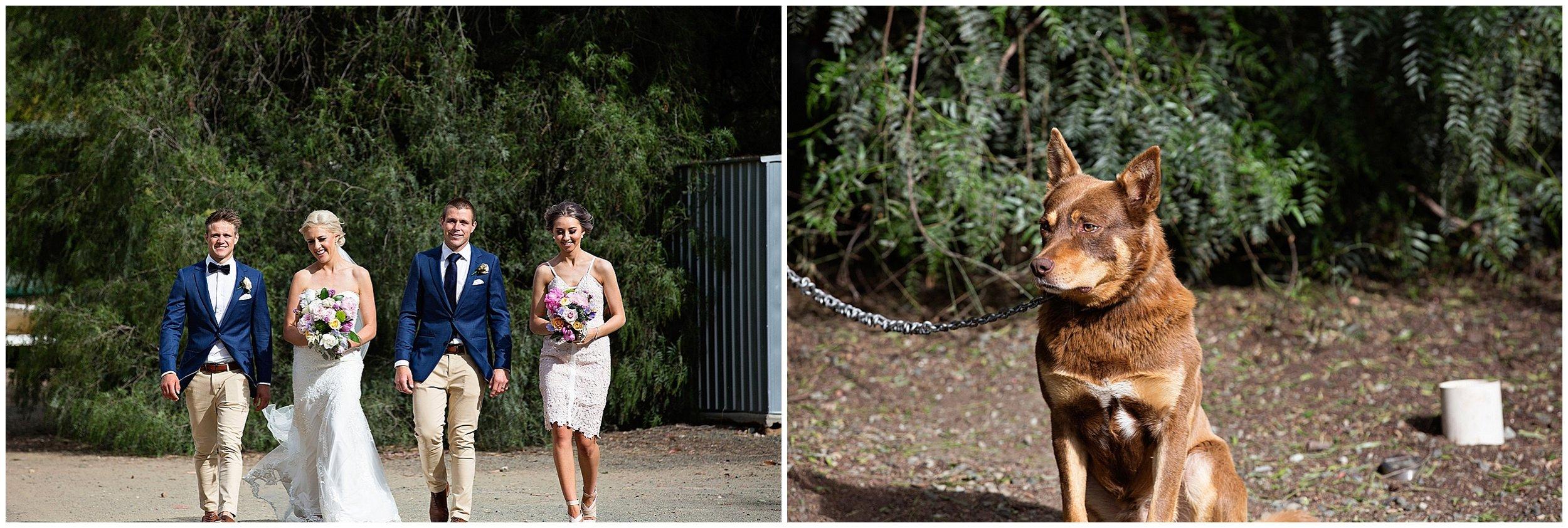 shepparton-wedding-photographer_0182.jpg