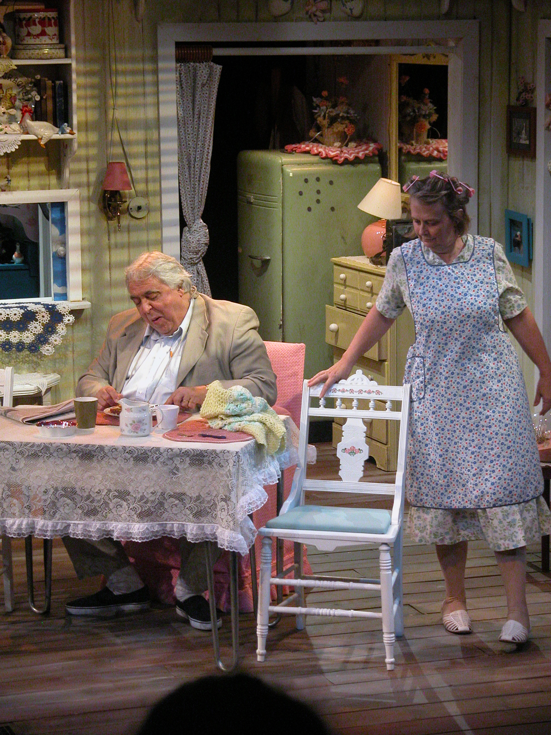 The Birthday Party- Pittsburgh REP  Director: Ronald Allen Lindblum  Assistant  Set Designer to  Steffi Mayer