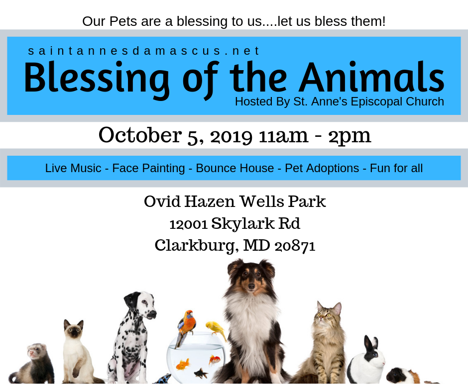 Blessing of Animals 2019.png
