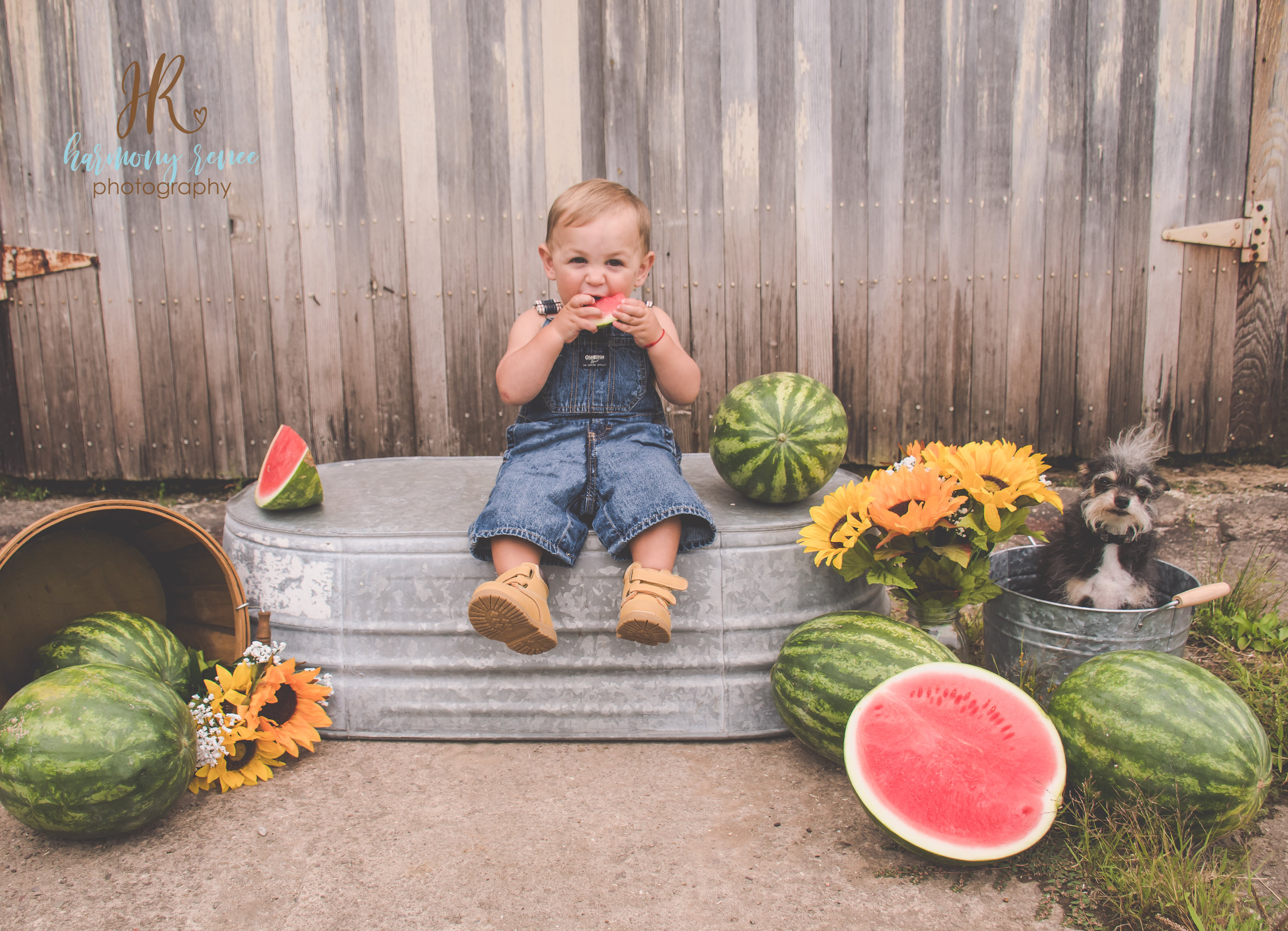 Paul+HollyWatermelon{fb}--7.jpg